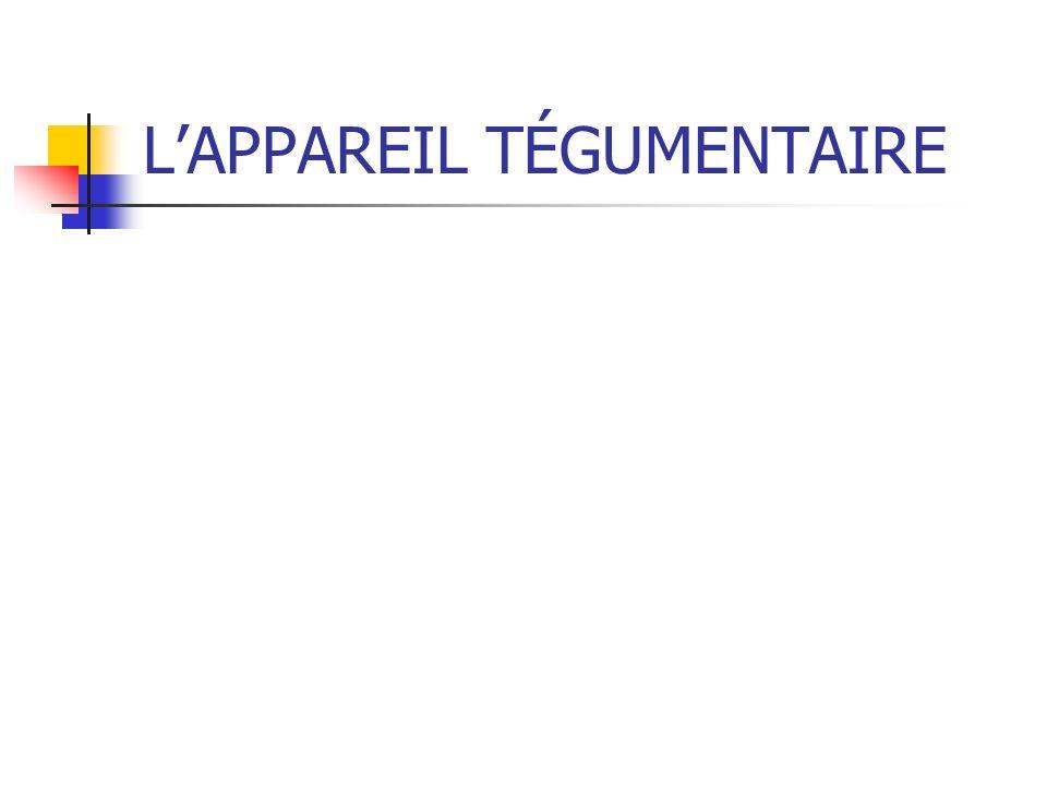 L'APPAREIL TÉGUMENTAIRE
