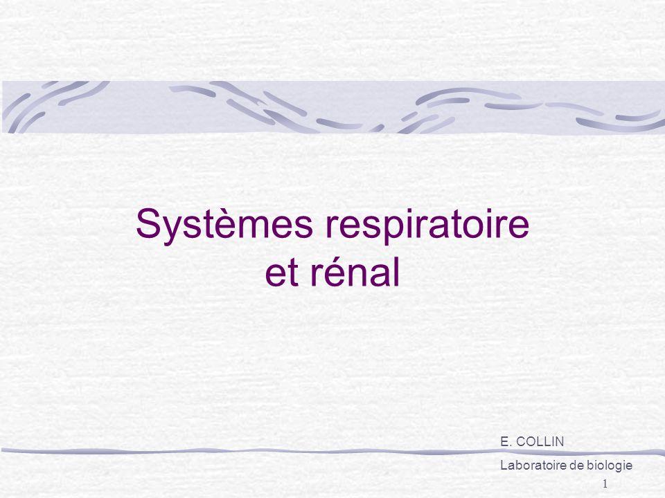 Systèmes respiratoire et rénal
