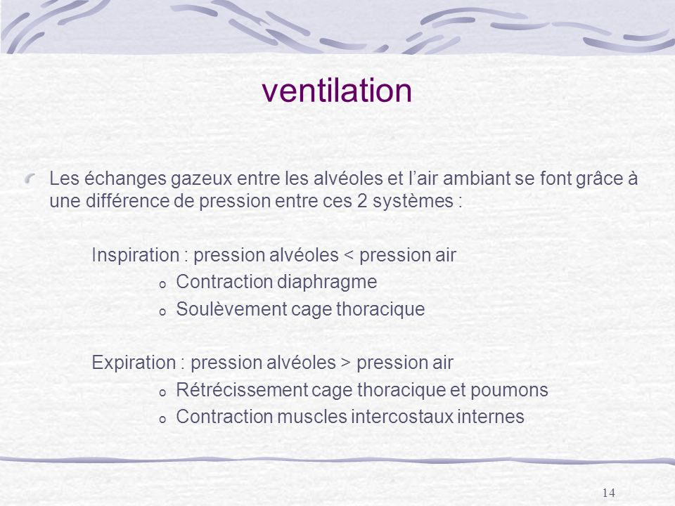 ventilation Les échanges gazeux entre les alvéoles et l'air ambiant se font grâce à une différence de pression entre ces 2 systèmes :