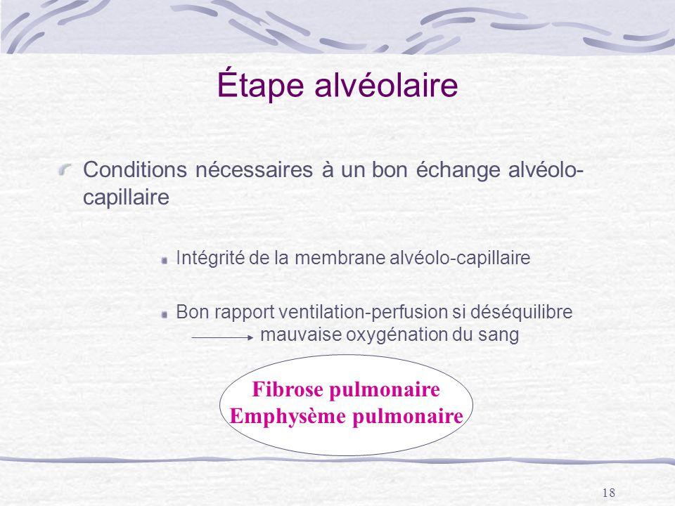 Étape alvéolaire Conditions nécessaires à un bon échange alvéolo-capillaire. Intégrité de la membrane alvéolo-capillaire.