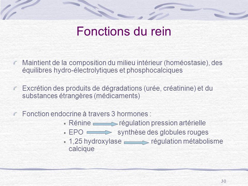 Fonctions du rein Maintient de la composition du milieu intérieur (homéostasie), des équilibres hydro-électrolytiques et phosphocalciques.