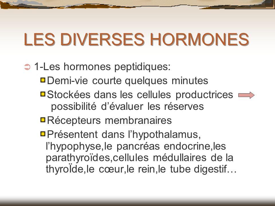 LES DIVERSES HORMONES 1-Les hormones peptidiques: