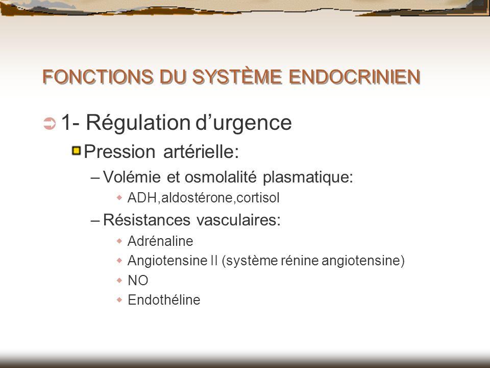 FONCTIONS DU SYSTÈME ENDOCRINIEN