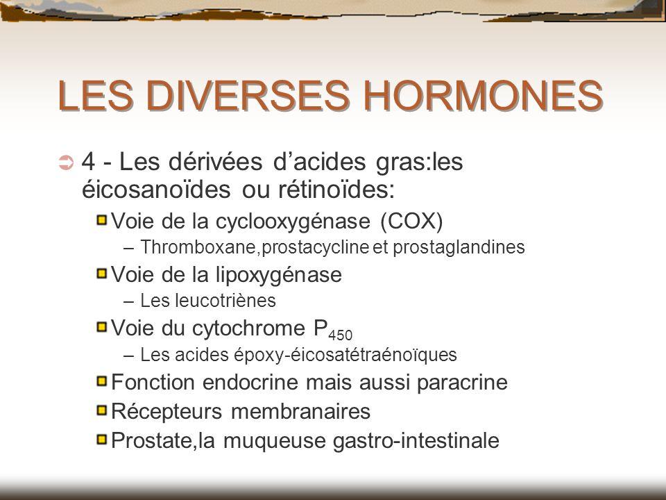 LES DIVERSES HORMONES 4 - Les dérivées d'acides gras:les éicosanoïdes ou rétinoïdes: Voie de la cyclooxygénase (COX)