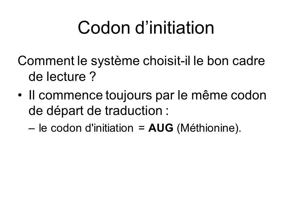 Codon d'initiation Comment le système choisit-il le bon cadre de lecture Il commence toujours par le même codon de départ de traduction :