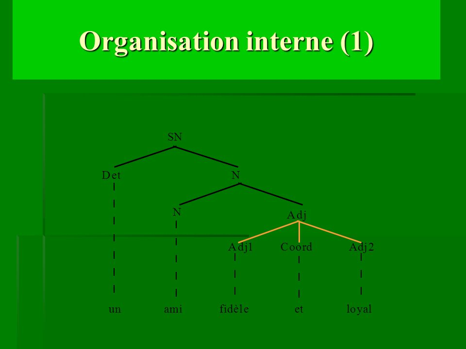 Organisation interne (1)