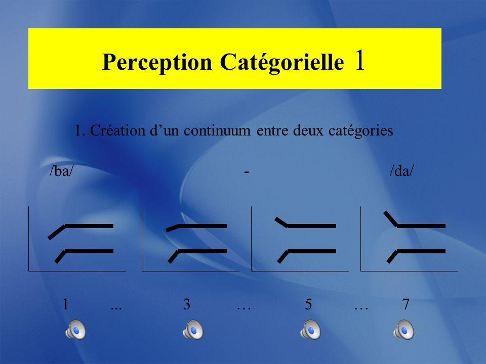 Perception Catégorielle 1