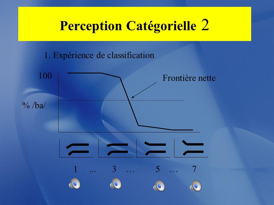 Perception Catégorielle 2