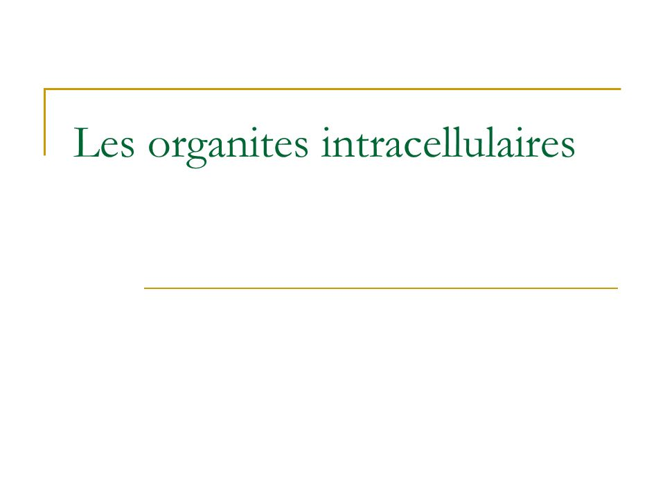 Les organites intracellulaires