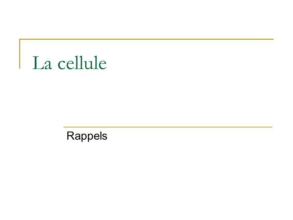 La cellule Rappels