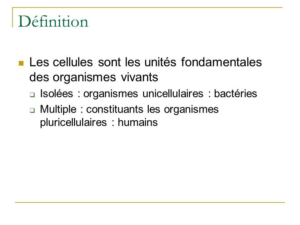 Définition Les cellules sont les unités fondamentales des organismes vivants. Isolées : organismes unicellulaires : bactéries.