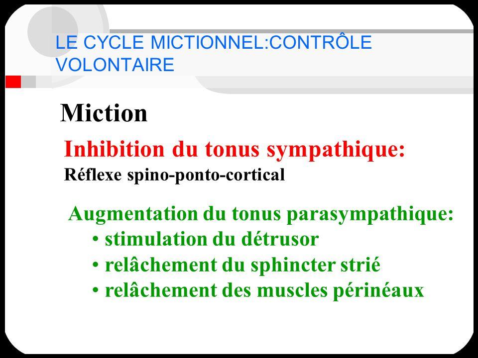LE CYCLE MICTIONNEL:CONTRÔLE VOLONTAIRE