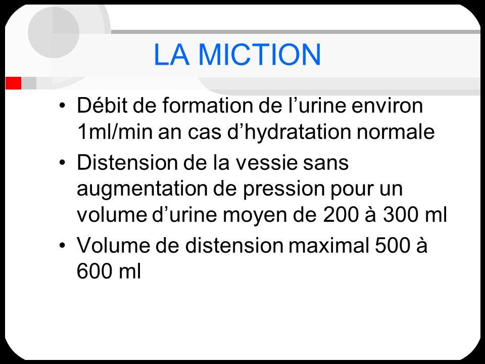 LA MICTIONDébit de formation de l'urine environ 1ml/min an cas d'hydratation normale.
