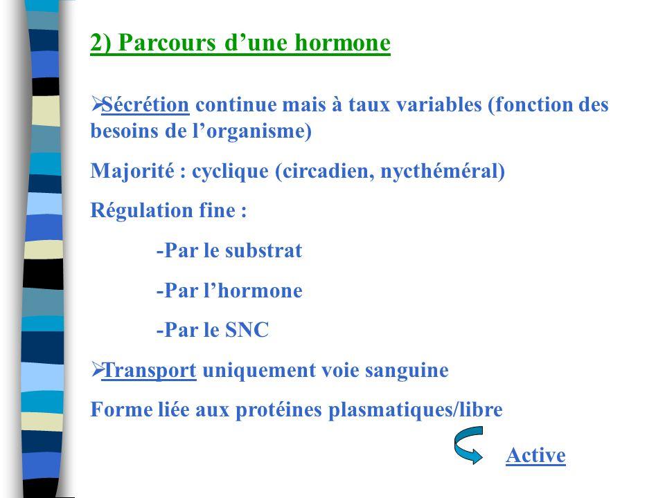 2) Parcours d'une hormone