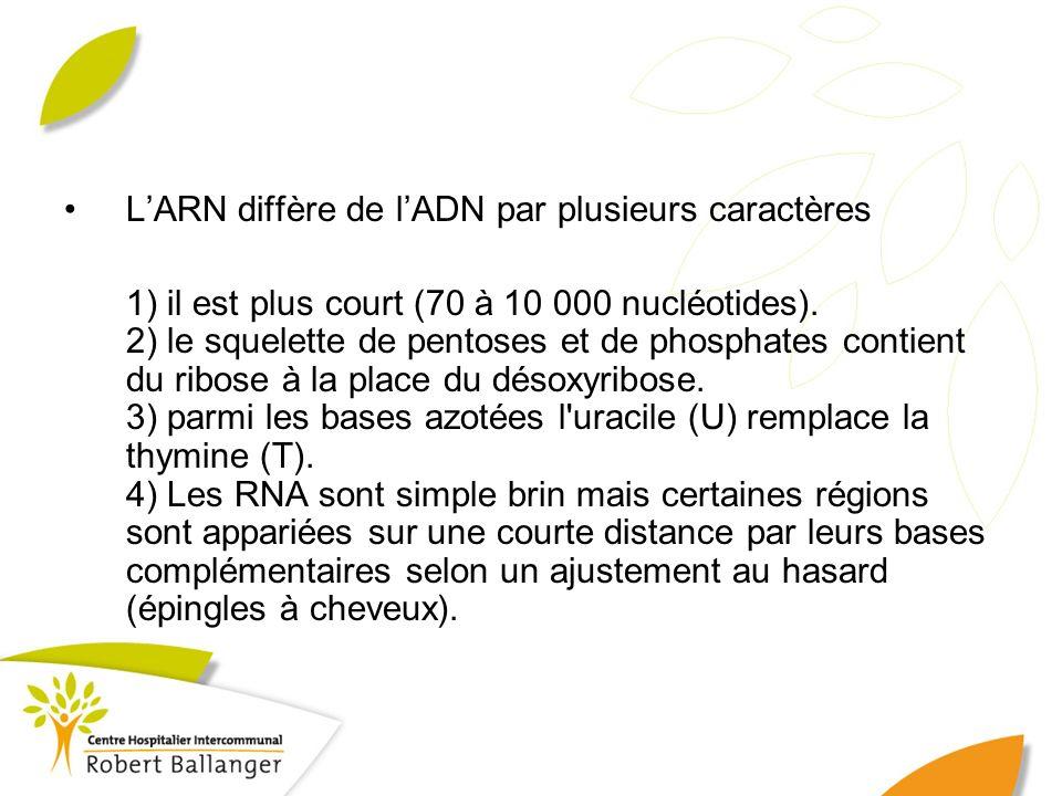 L'ARN diffère de l'ADN par plusieurs caractères