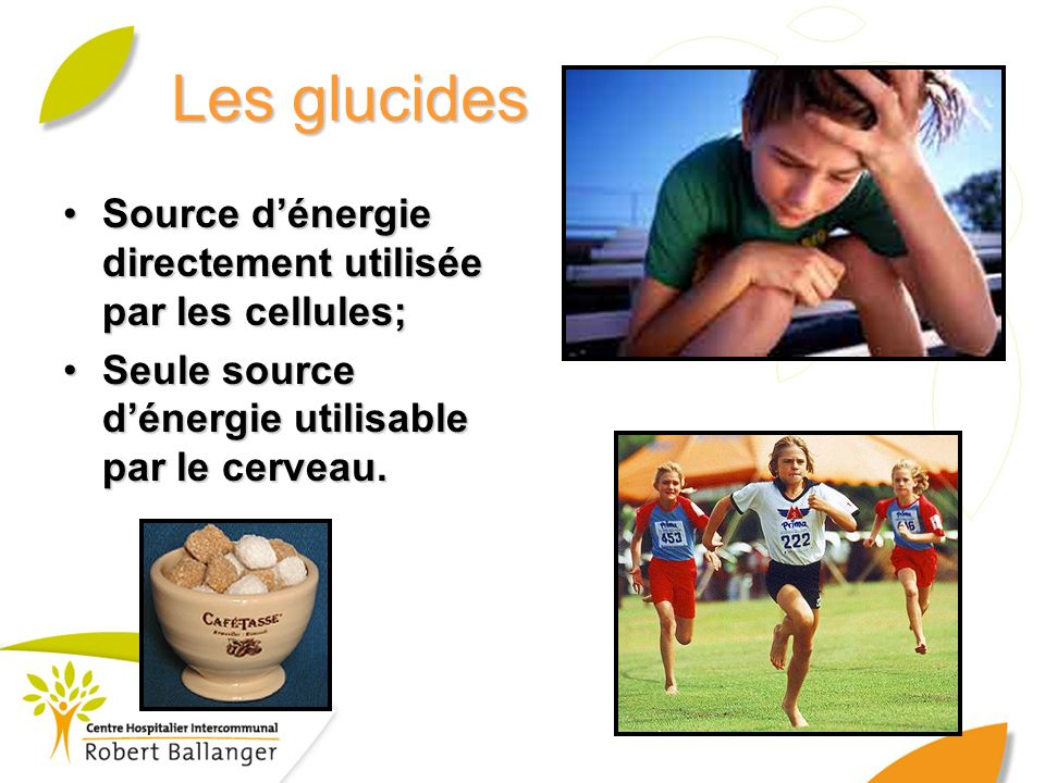 Les glucides Source d'énergie directement utilisée par les cellules;