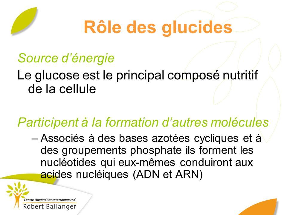 Rôle des glucides Source d'énergie