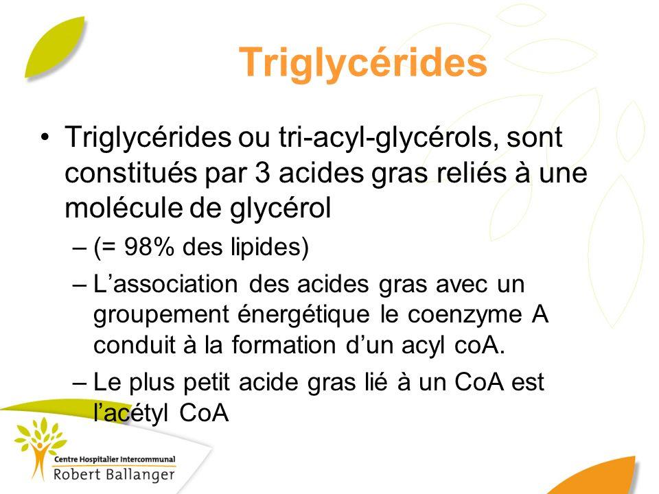 Triglycérides Triglycérides ou tri-acyl-glycérols, sont constitués par 3 acides gras reliés à une molécule de glycérol.