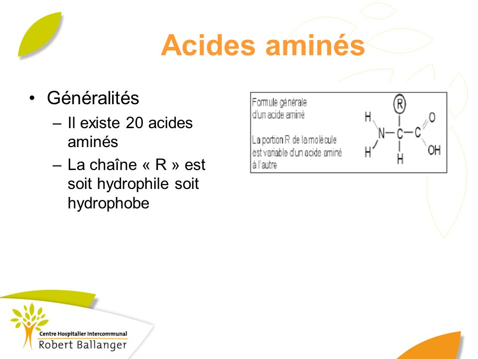 Acides aminés Généralités Il existe 20 acides aminés