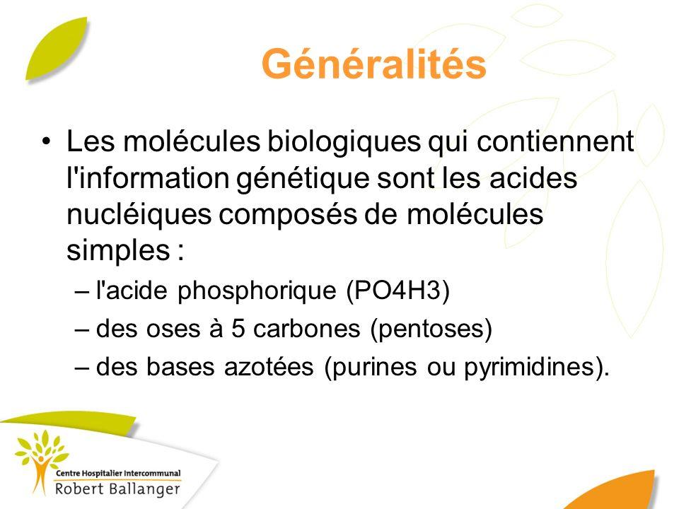 Généralités Les molécules biologiques qui contiennent l information génétique sont les acides nucléiques composés de molécules simples :