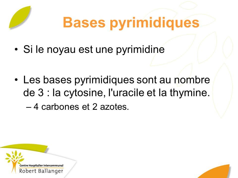 Bases pyrimidiques Si le noyau est une pyrimidine