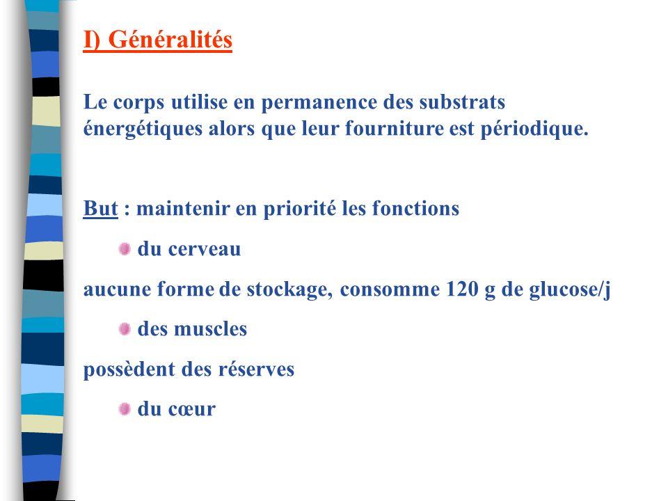 I) Généralités Le corps utilise en permanence des substrats énergétiques alors que leur fourniture est périodique.