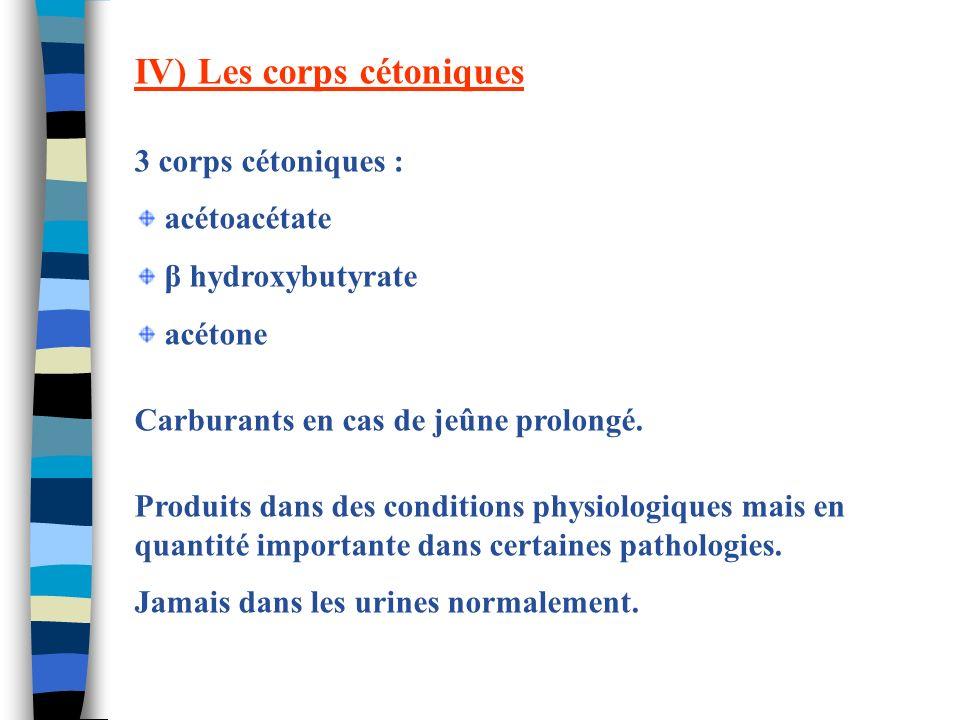 IV) Les corps cétoniques