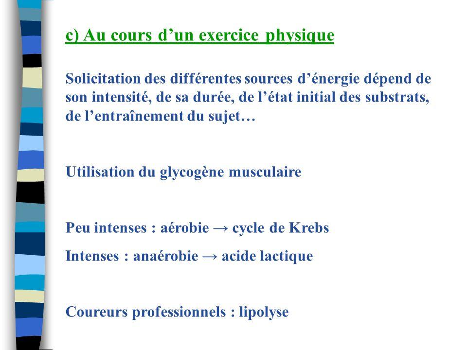 c) Au cours d'un exercice physique