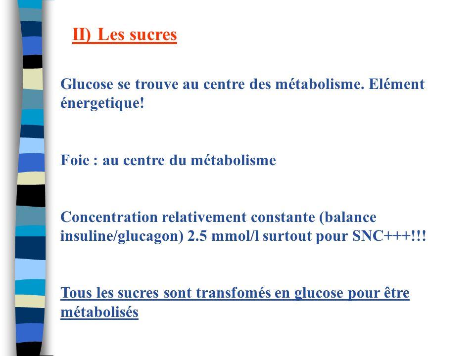 II) Les sucres Glucose se trouve au centre des métabolisme. Elément énergetique! Foie : au centre du métabolisme.
