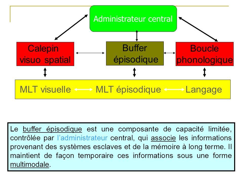 MLT visuelle MLT épisodique Langage