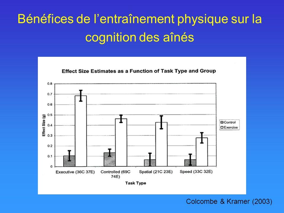 Bénéfices de l'entraînement physique sur la cognition des aînés