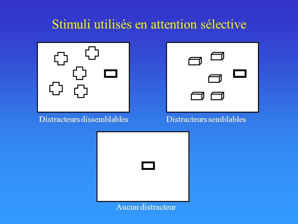 Stimuli utilisés en attention sélective