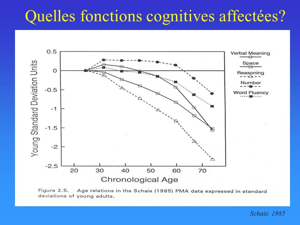 Quelles fonctions cognitives affectées