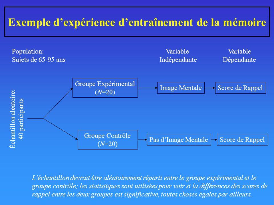 Exemple d'expérience d'entraînement de la mémoire