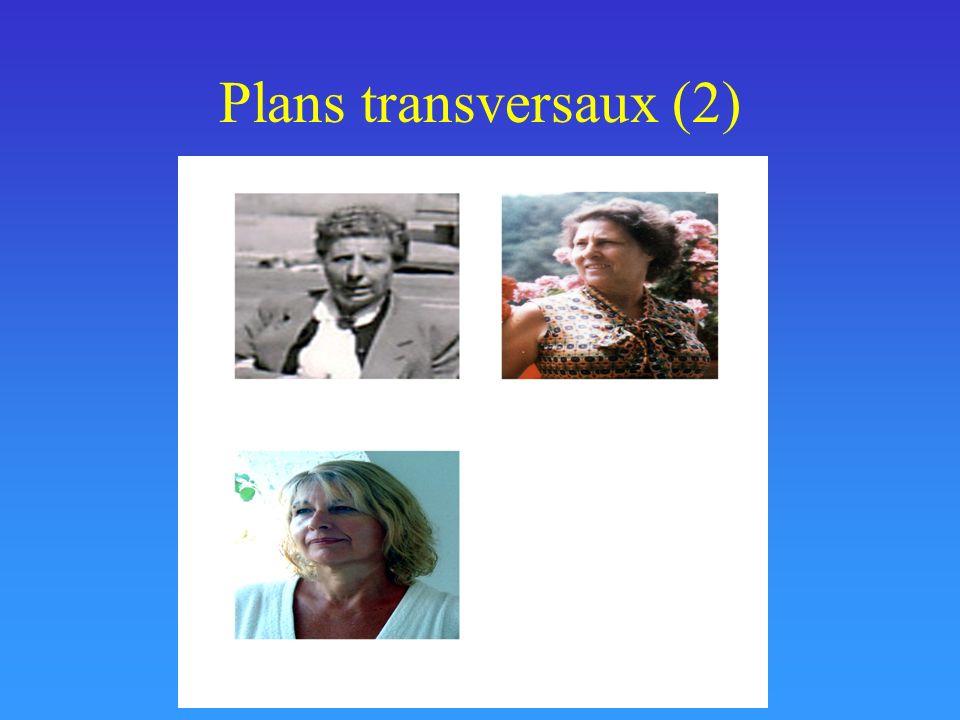Plans transversaux (2) Photographie des mêmes personnes, exceptée la petite fille, à 50 ans (la fille a eu 50 ans en 2002),