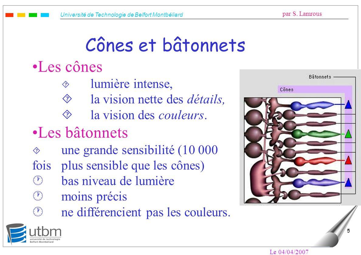 Cônes et bâtonnets Les cônes Les bâtonnets
