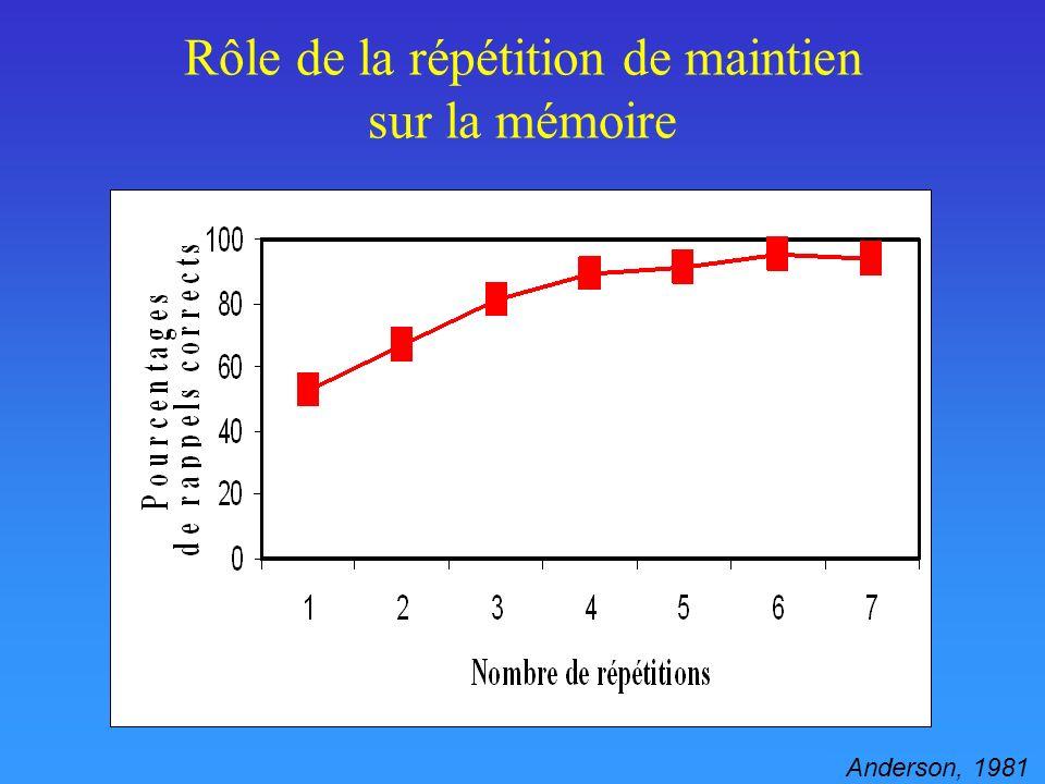 Rôle de la répétition de maintien sur la mémoire
