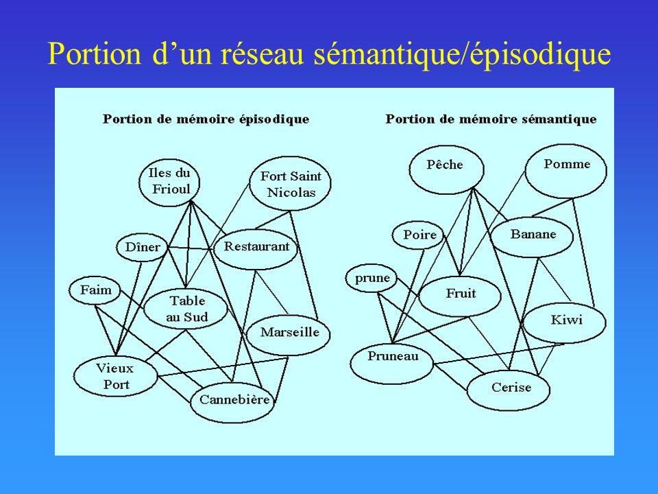 Portion d'un réseau sémantique/épisodique