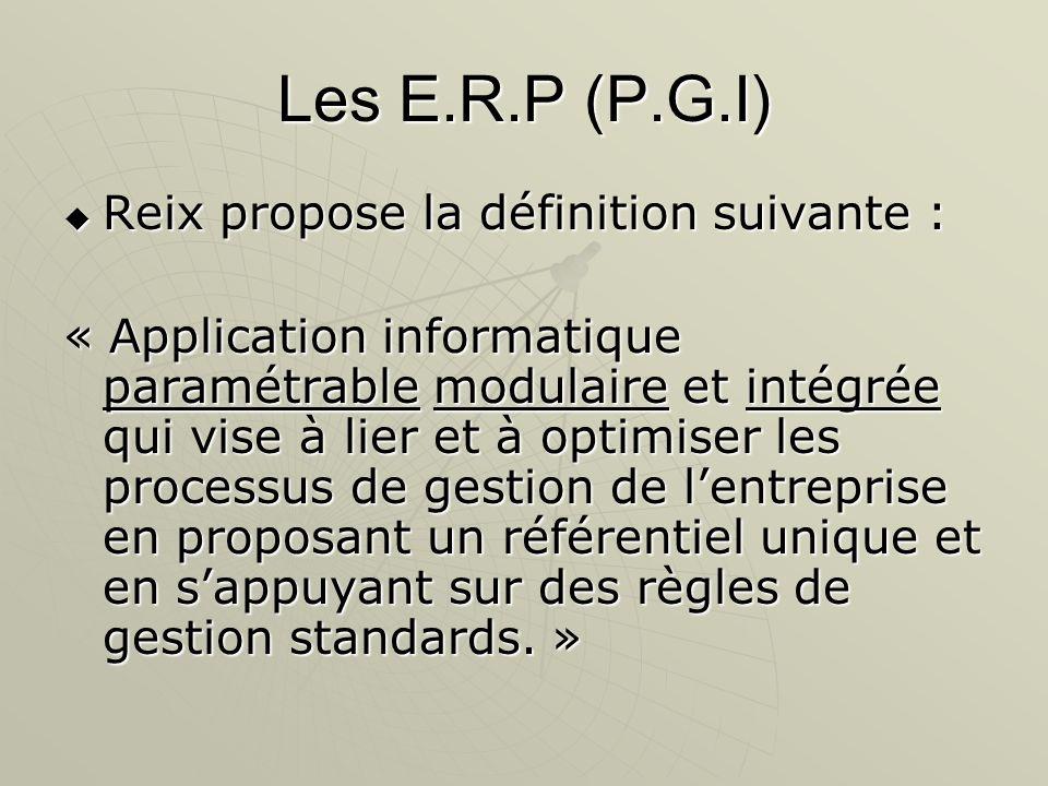 Les E.R.P (P.G.I) Reix propose la définition suivante :