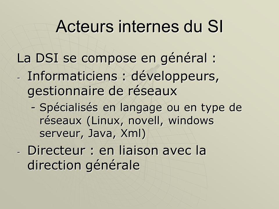 Acteurs internes du SI La DSI se compose en général :