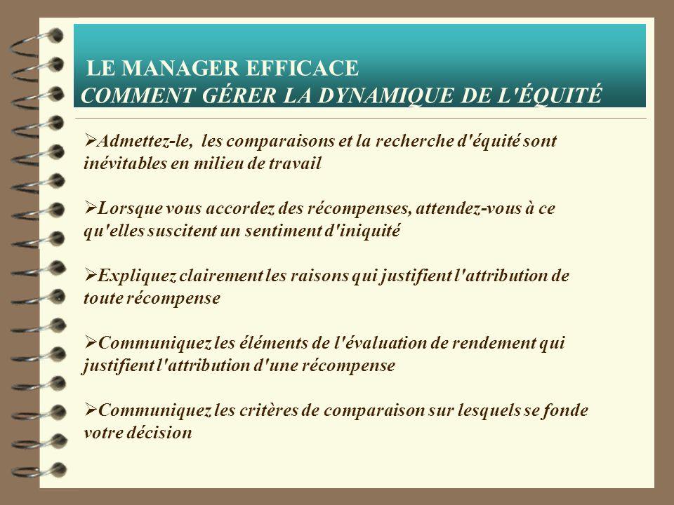LE MANAGER EFFICACE COMMENT GÉRER LA DYNAMIQUE DE L ÉQUITÉ