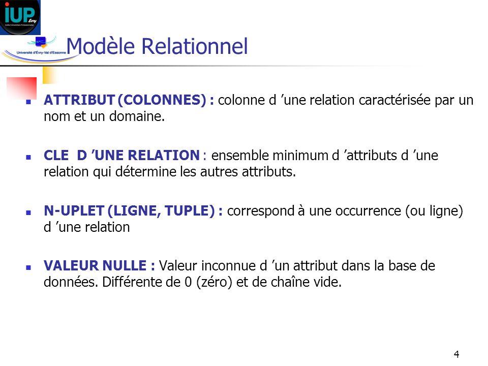 Modèle Relationnel ATTRIBUT (COLONNES) : colonne d 'une relation caractérisée par un nom et un domaine.