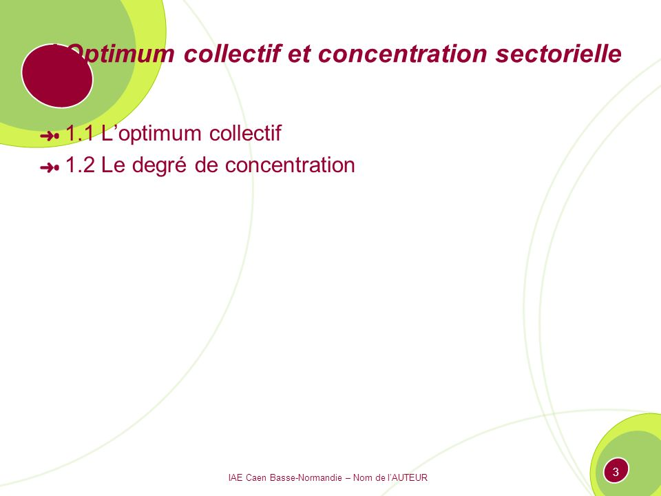 I Optimum collectif et concentration sectorielle