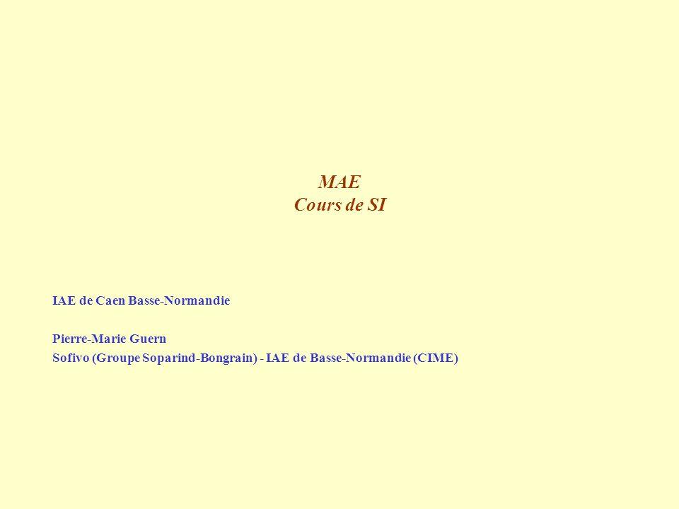 MAE Cours de SI IAE de Caen Basse-Normandie Pierre-Marie Guern