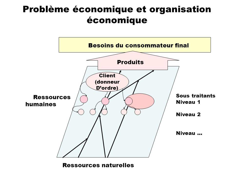 Problème économique et organisation économique