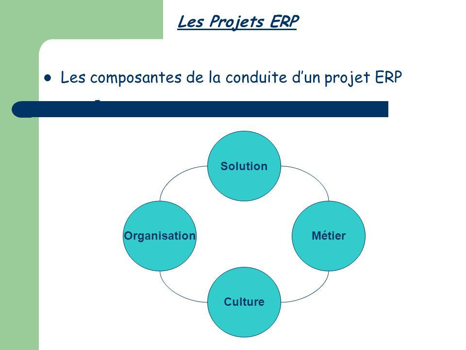 Les composantes de la conduite d'un projet ERP -