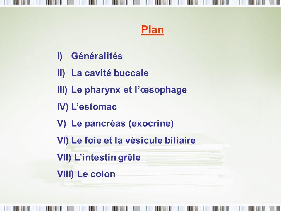 Plan Généralités La cavité buccale Le pharynx et l'œsophage L'estomac