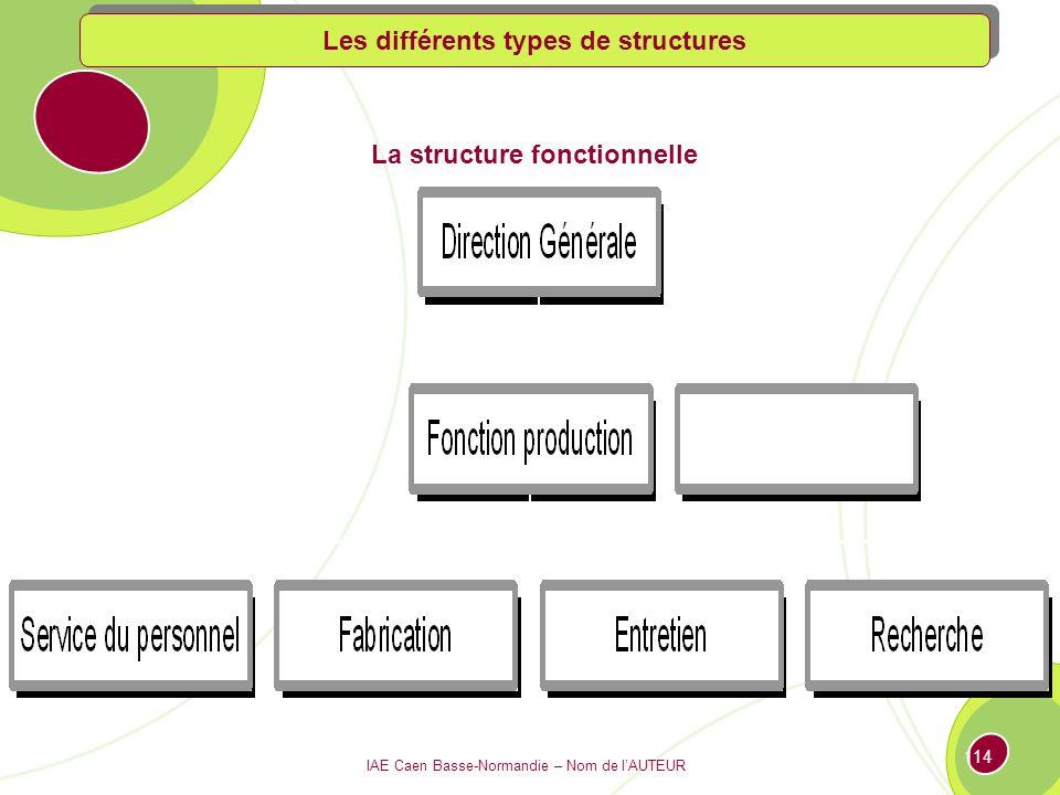 Les différents types de structures La structure fonctionnelle