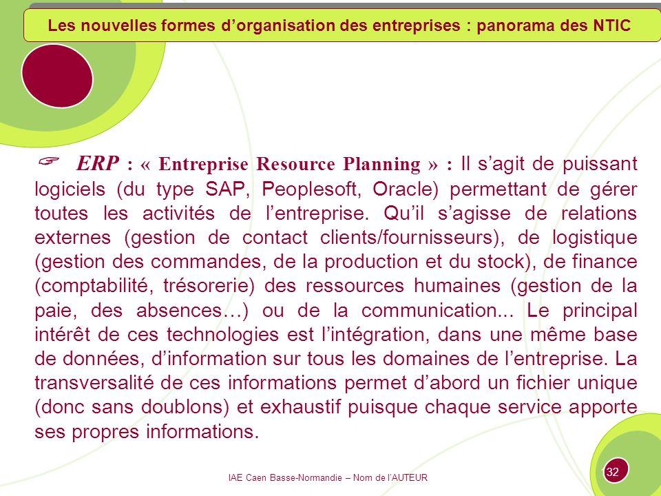 Les nouvelles formes d'organisation des entreprises : panorama des NTIC