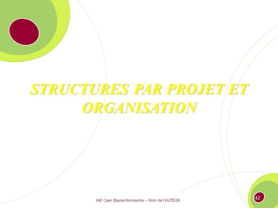 STRUCTURES PAR PROJET ET ORGANISATION